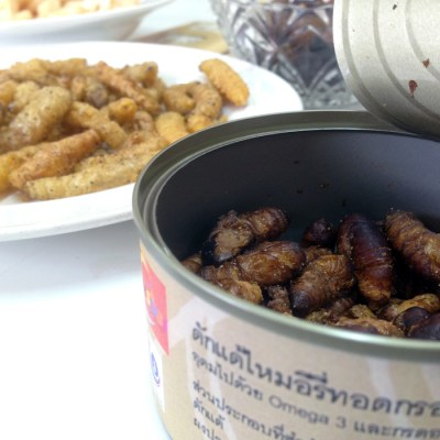 Eri Silkworm and Lava Snacks