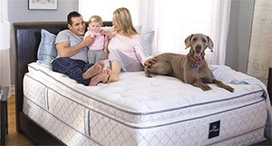 family with a dog happy on the mattress
