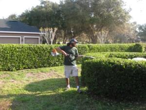 Longwood Fl Landscaping Company