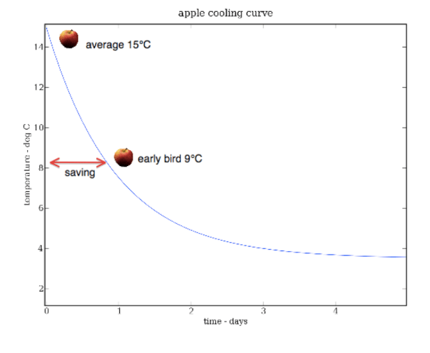 The Decay Constant Isn't – Matty's Paradigm C Cup Example