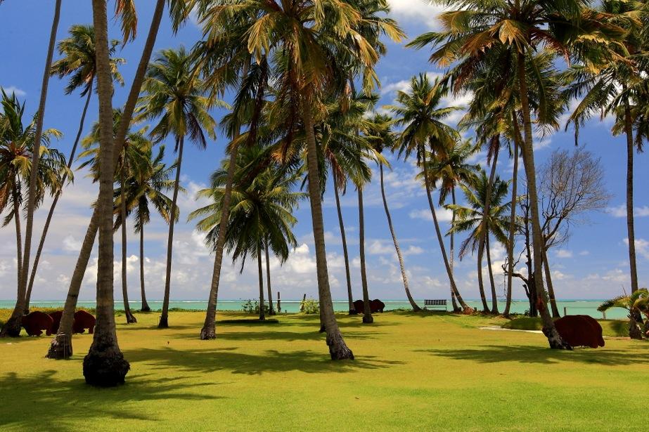 Carrossel aluguel de casas de luxo Villa01 em Sao Miguel dos Milagres Alagoas 21