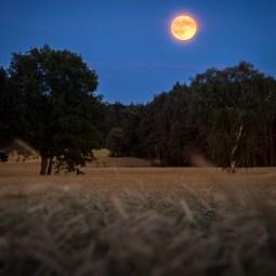 Altmark-Mond