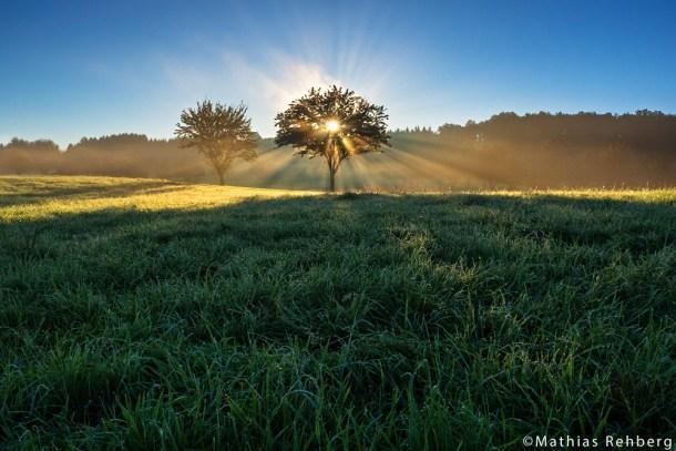 Bild der Woche – Sonnenaufgang to go