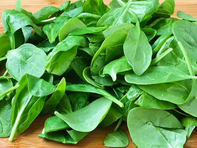 espinafre-Melhores-Alimentos-Para-a-Definição-Muscular-site-Maucha-Coelho 2