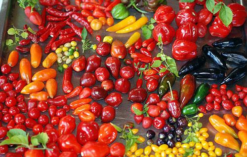 várias-pimentas-nutrição-Dra-ana-karina-site-maucha-choelho