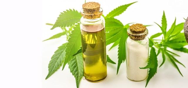 hemp-derived CBD isolate oil in hawaii. how many drops of hemp oil do i need for pain?