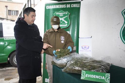 Cerca de 10 kilos de marihuana elaborada incautan en San Javier