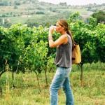 rutas_del_vino_enoturismo