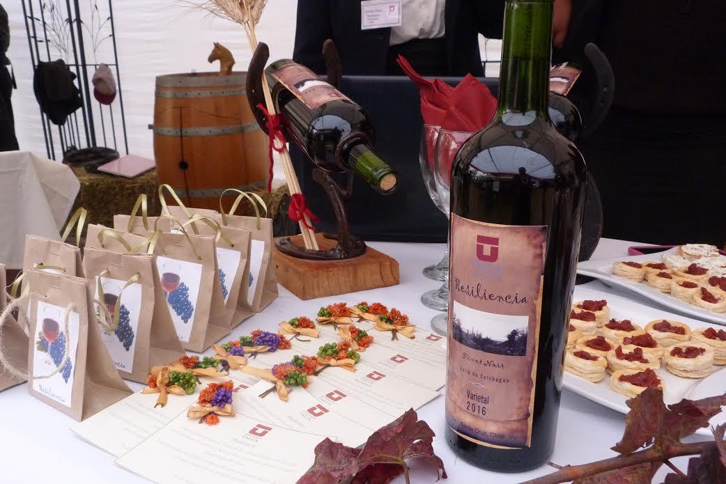 Campus Colchagua UTALCA realizó tercera Fiesta de la Vendimia presentando sus propios vinos
