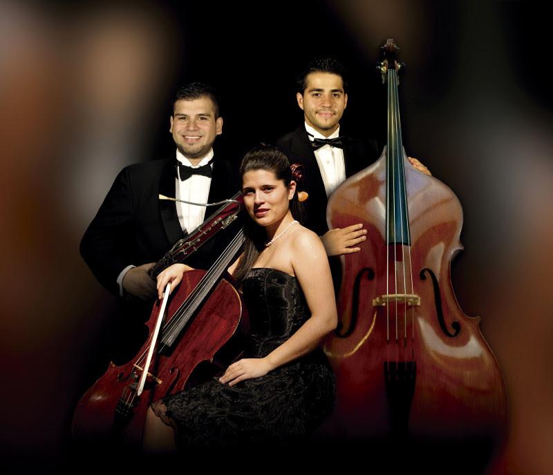 La Orquesta Clásica del Maule prepara un concierto especial de solistas