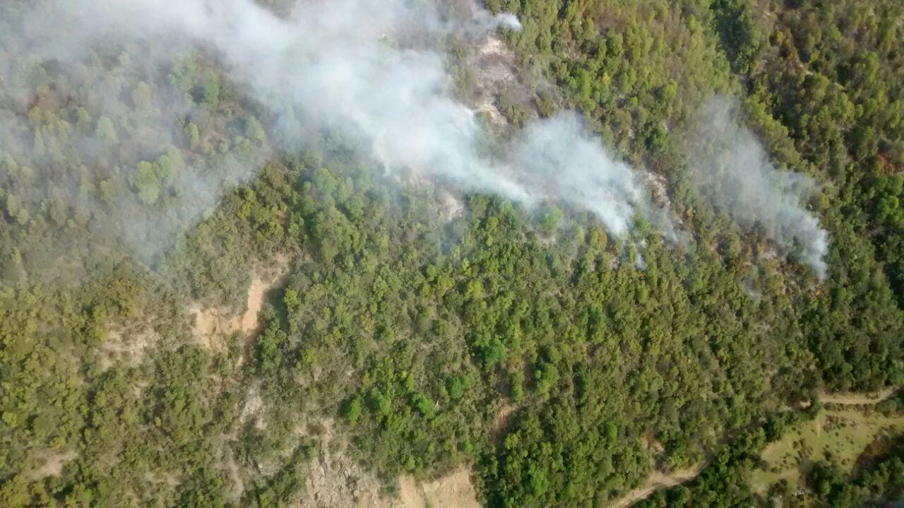 Incendio en el Cajón del Achibueno amenaza al Santuario de la Naturaleza