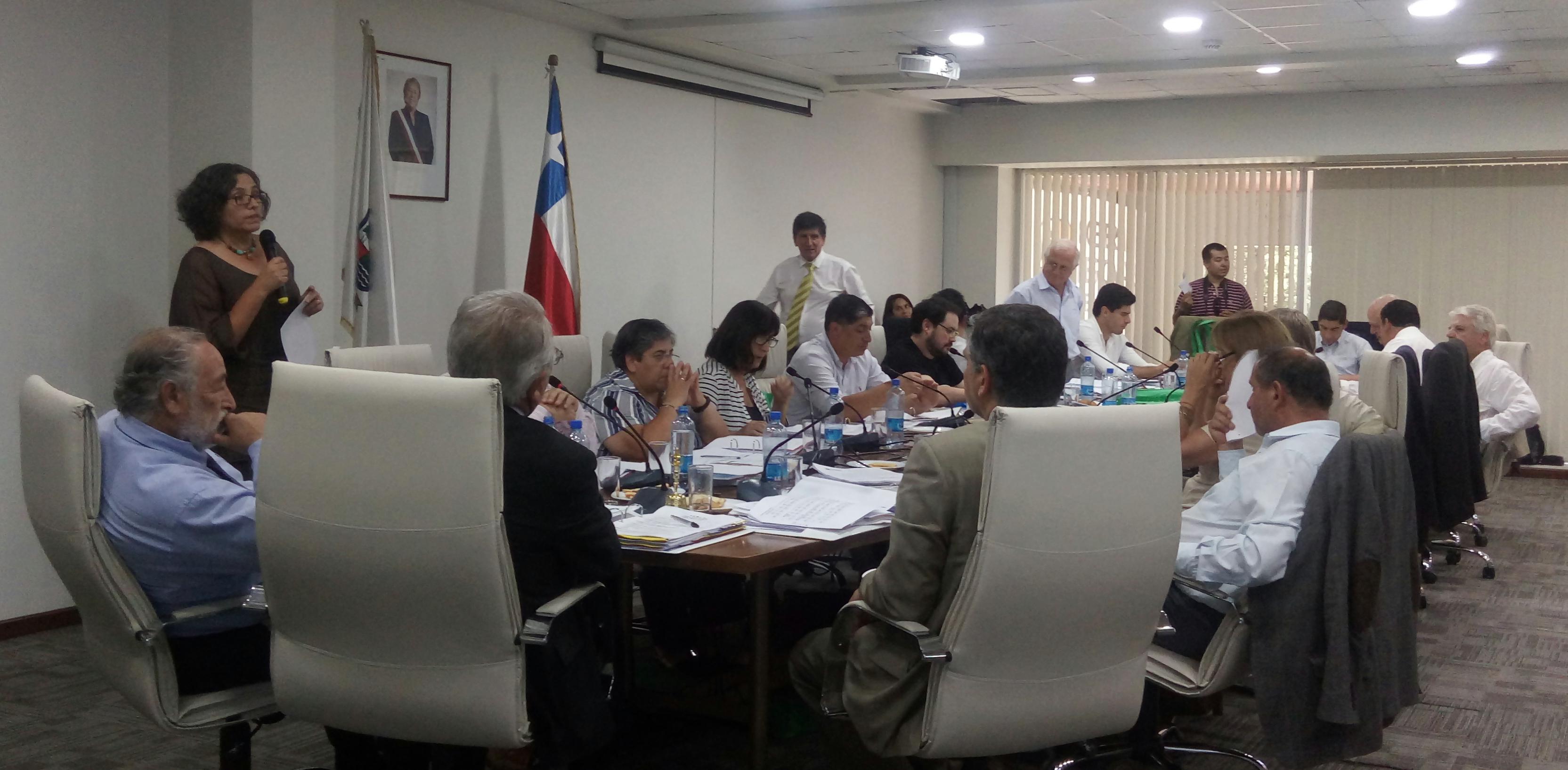 CORE Maule aprueba proyecto para mejorar oportunidades de emprendimiento a mujeres