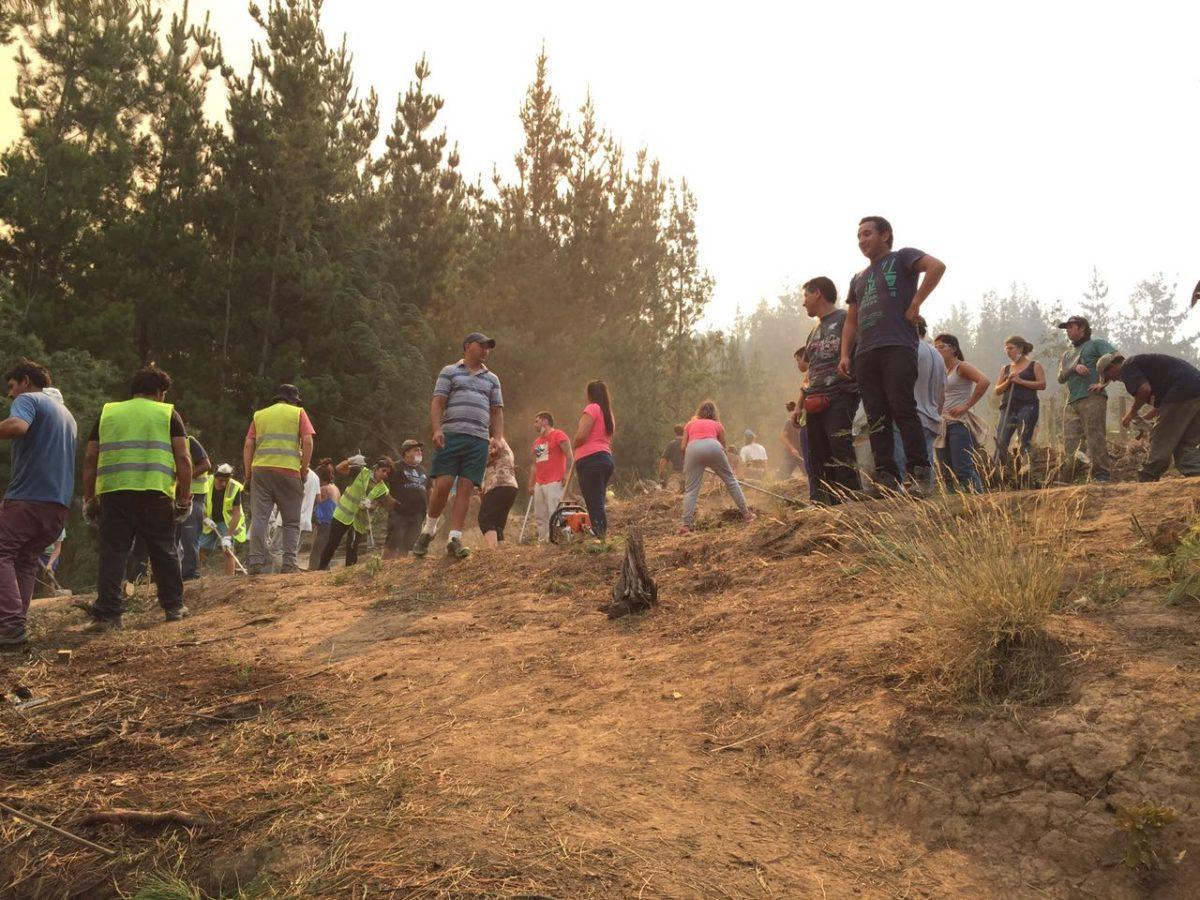 Evacuan a residentes de Llico por nuevo foco de incendio forestal en sector lago Vichuquén