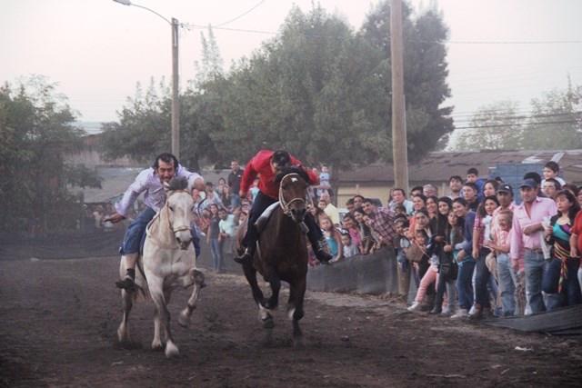 6ta Feria Costumbrista Expo Pehuenche San Clemente 2017: un paso a la tradición