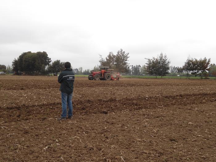 SAG abre temporada de postulaciones con concurso de emergencia para zonas de secano de la región