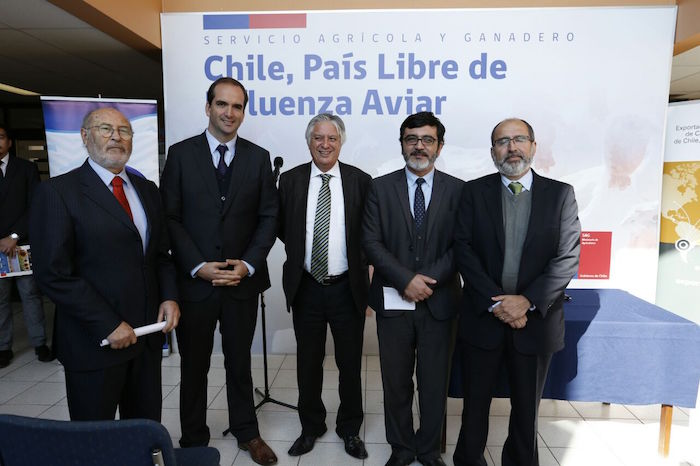 SAG declara a Chile libre de Influenza Aviar