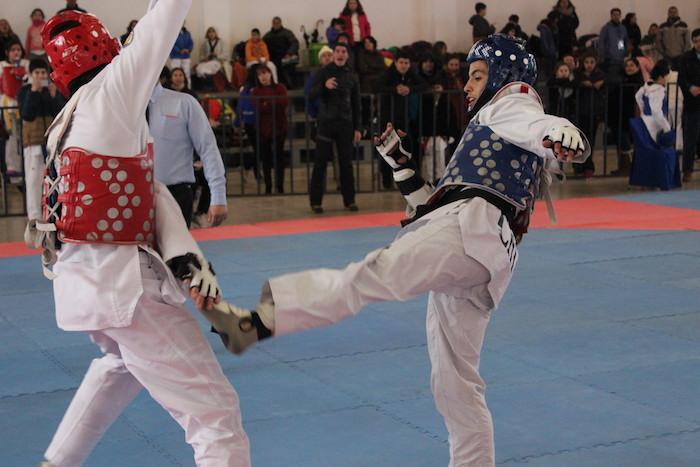 Directora Regional de IND visitó proyecto donaciones adjudicado a la Federación de Taekwondo