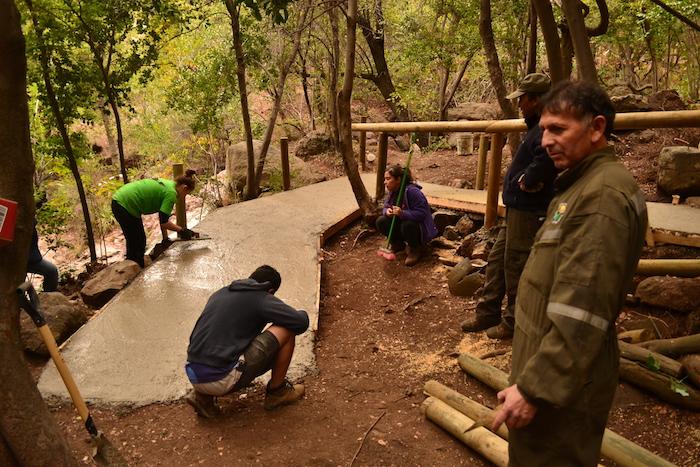 Más de 40 jóvenes del Maule representarán a la región en el voluntariado medioambiental de INJUV