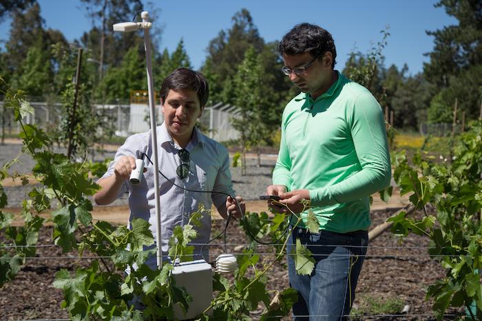 En el Maule crean sensores de bajo costo para mejorar calidad de las cosechas