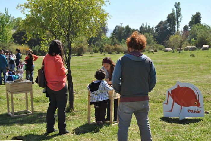 """Un verano con ciencia: """"Exposición Diminutos"""" se toma la Biblioteca de Rauco"""
