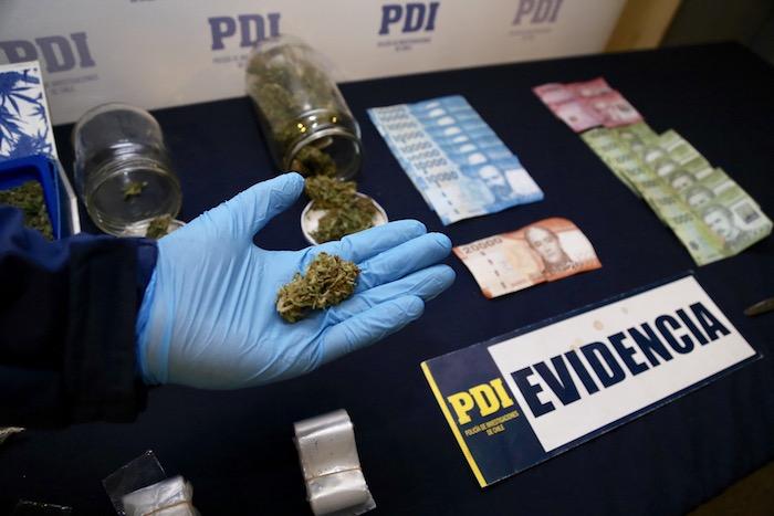 PDI Talca sacó de circulación 250 dosis de marihuana
