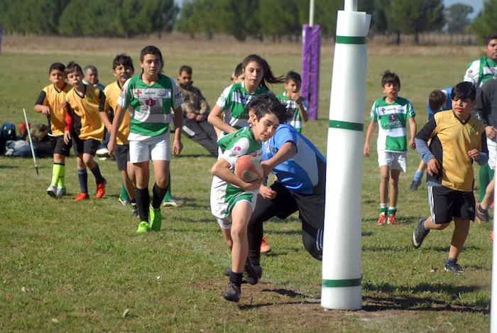 Abiertas postulaciones a escuelas de gimnasia rítmica y rugby