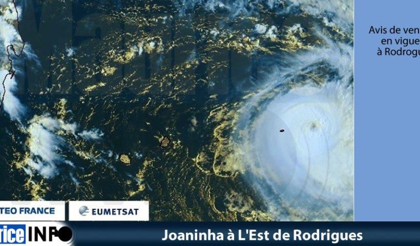 Joaninha à L'Est de Rodrigues