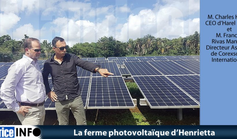 La ferme photovoltaïque d'Henrietta