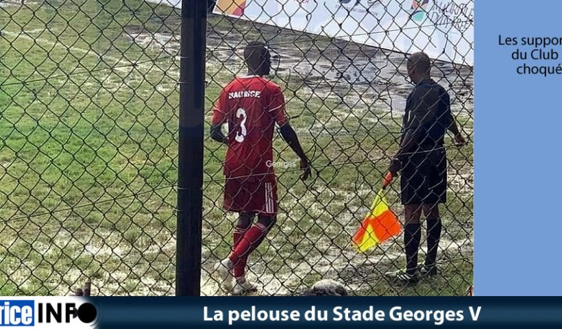 La pelouse du Stade Georges V