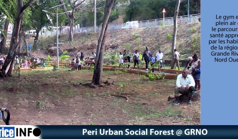 Peri Urban Social Forest @ GRNO