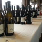 Maldonado Wine