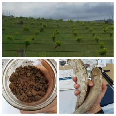 biodynamic farming