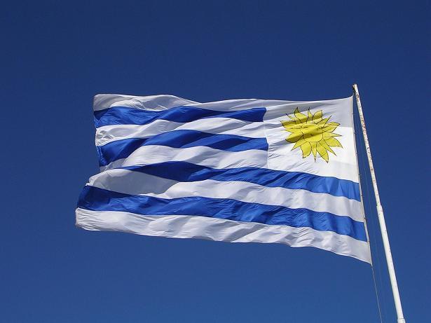 Uruguay wine