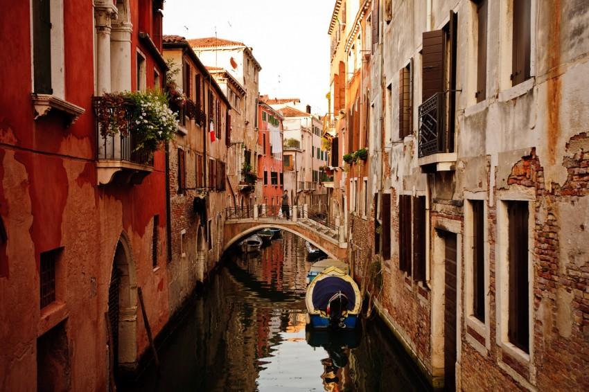 Venezia Rose