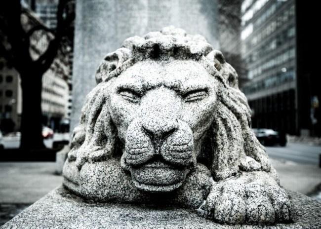 The Lion Sleep Tonight...