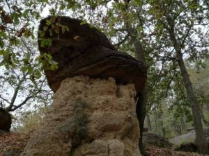 camper in piemonte Ciciu