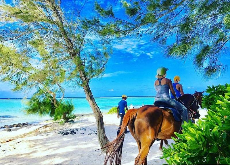 Horse riding in Mauritius