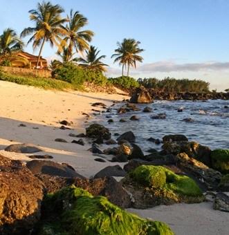 Mauritius voted top island destination