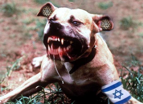 """""""Israele deve agire come un cane arrabbiato, troppo pericoloso da disturbare"""" (Moshe Dayan)."""