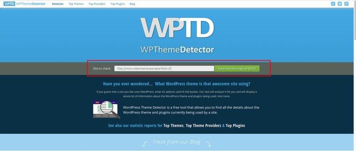 Come scoprire il tema WordPress con Theme Detector