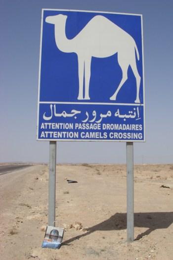 mauro-pispoli-shopping-bag-tunisia
