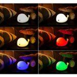 ledmomo silicone Veilleuse LED Capteur Tactile Lampe de chevet à intensité variable USB rechargeable lampe d'ambiance pour les enfants Chambre Design Dauphin