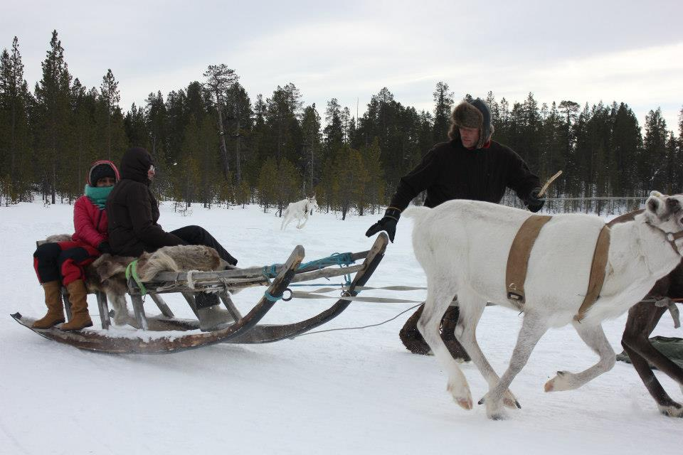 Reindeer sleigh ride at Lovozero