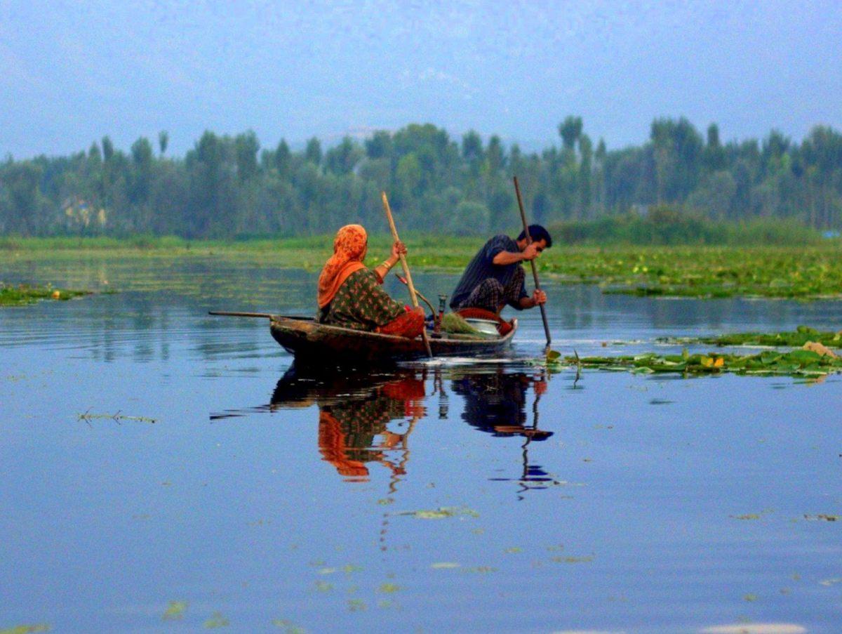 #Srinagar #Dallake #Kashmirtourism