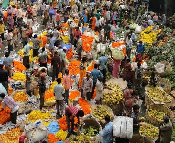 mallick bazaar flower market in calcutta is best in the mroning