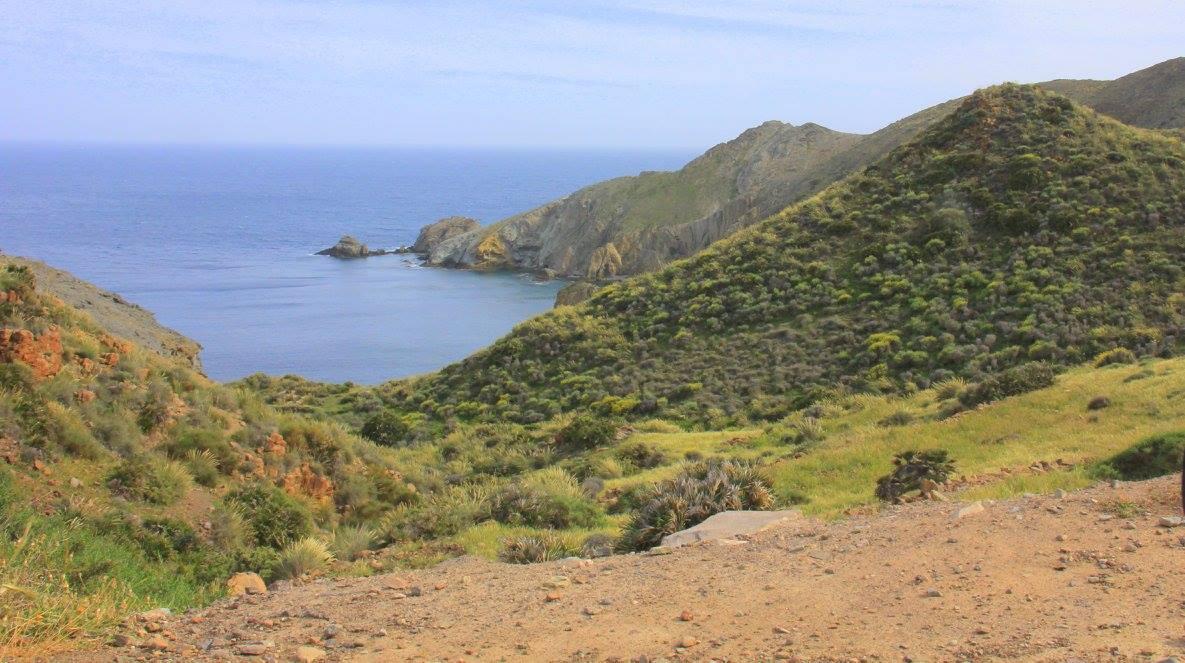 cabo de gata national park has stunning coastline