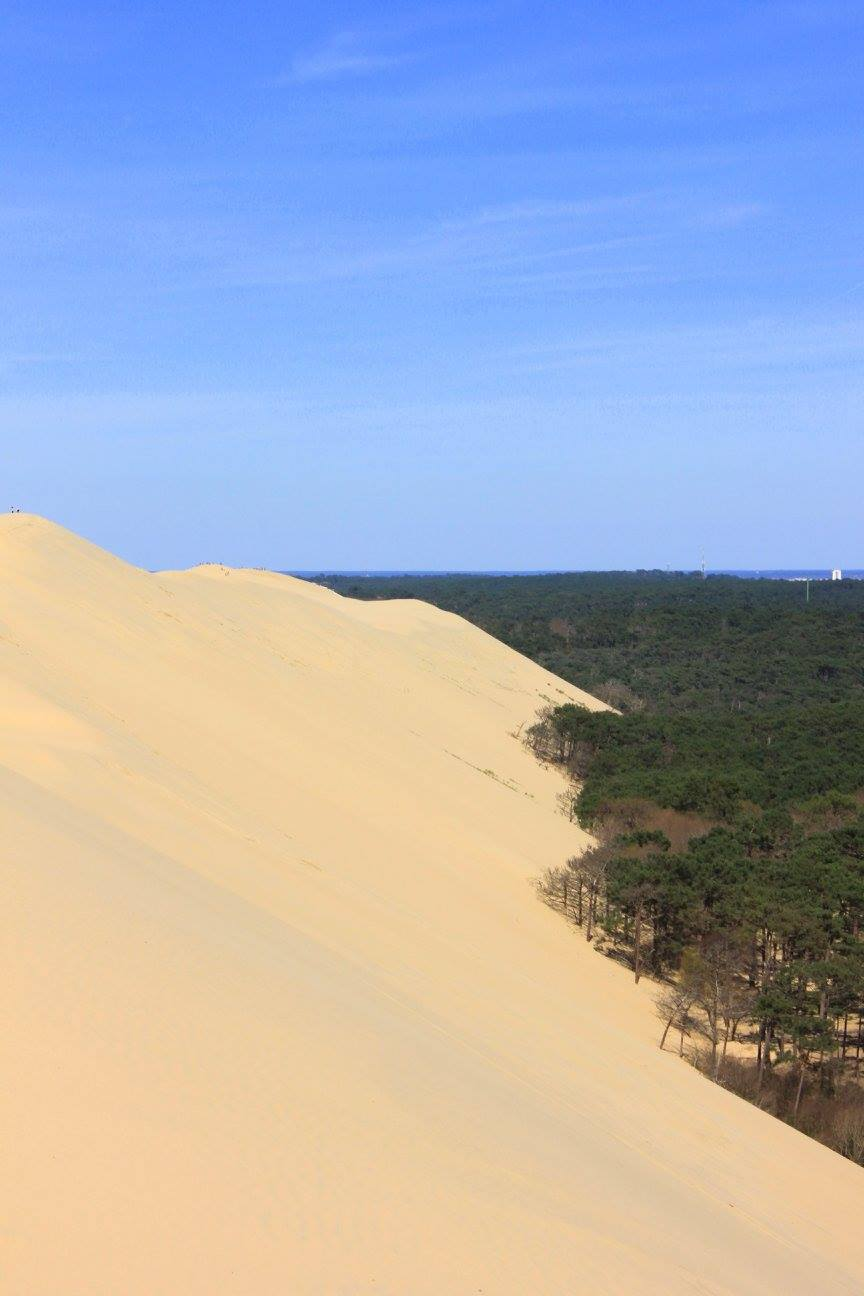 Dune de Pilat is the tallest sand dune of Europe