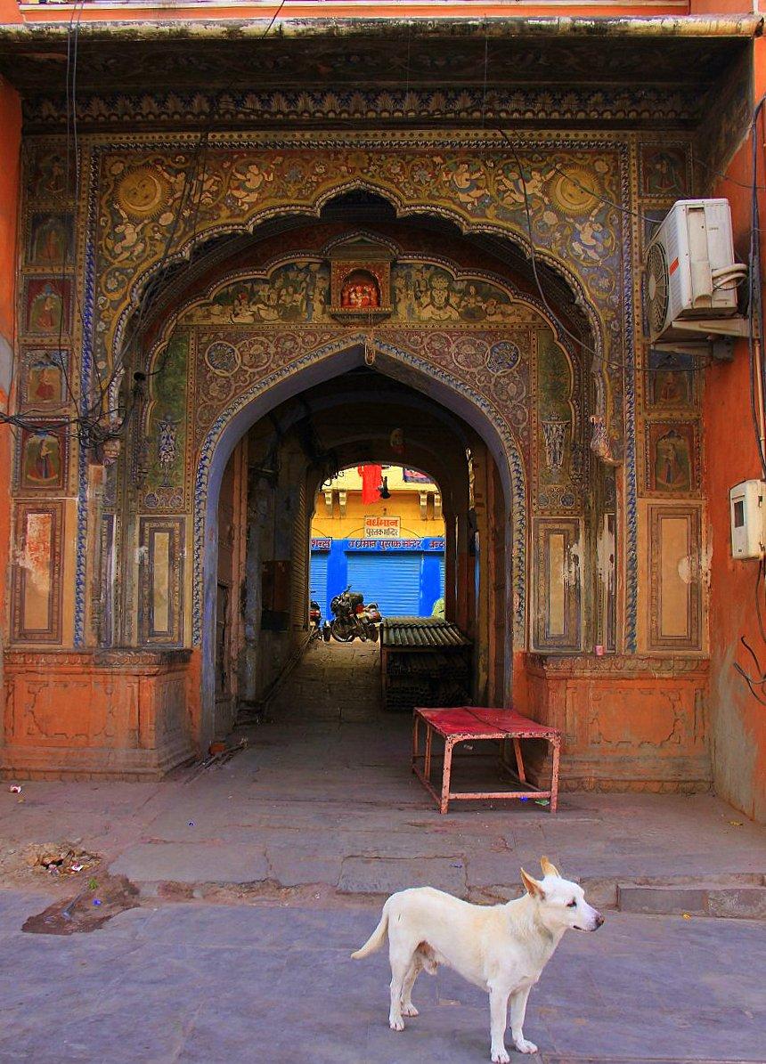 Frescoes and doorways of Jaipur havelis/mansions