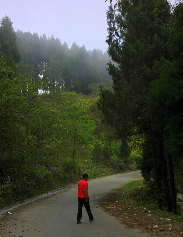 Hiking is great for a kalimpong experience