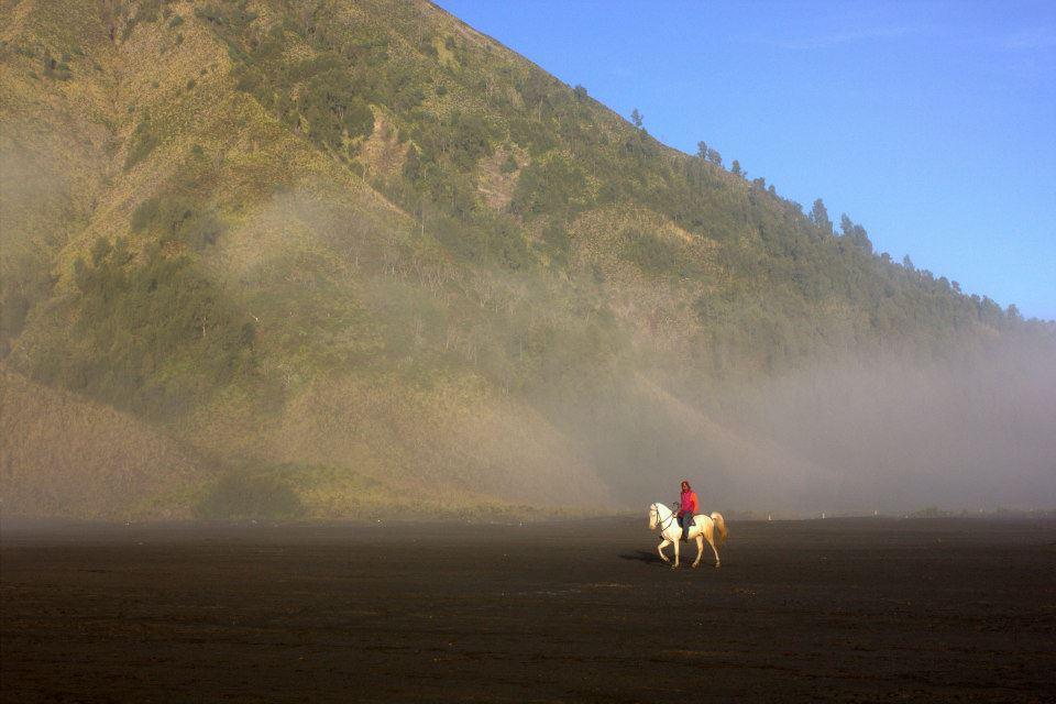 A horse rider inside the ancient caldera at Mount Bromo